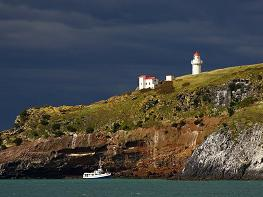 Dramatic view of Tairoa Head with the white lighthouse against dark cloudy sky, small boat passing by the cliffs, Otago harbour, Dunedin, New Zealand