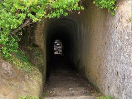 the tunnel at tunnel beach